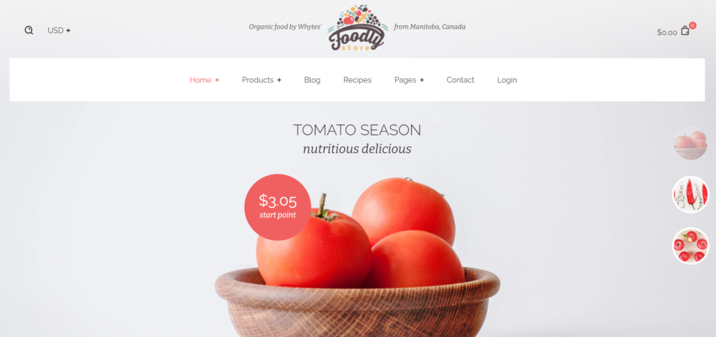 Foodly Best Shopify theme